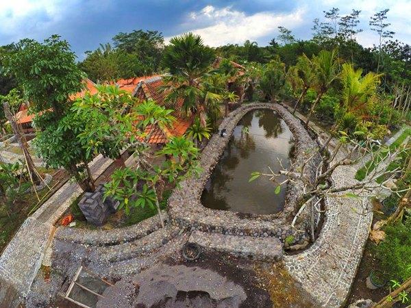 Kampung Flory - Pict by Kampung Flory Jogja